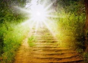 Elevating Your Life Path- Angel Course