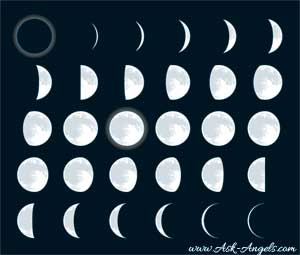 moon cycle