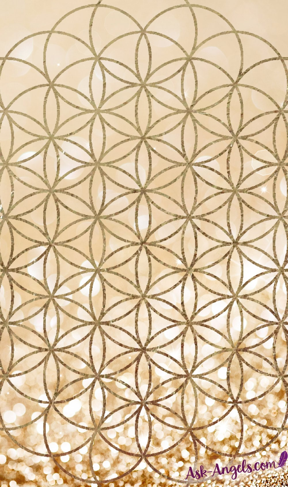 Flower of Life Meditation