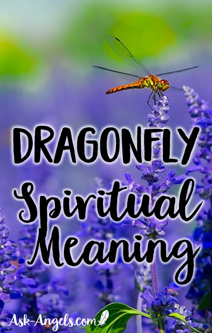 Dragonfly Meaning